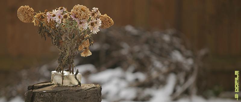 Tél a tavaszban