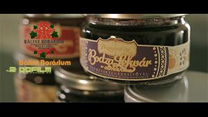 Bálint Borárium <br /> – Image Film